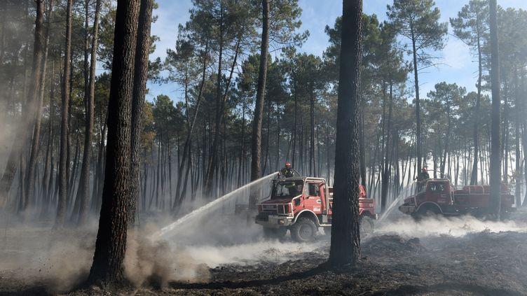 Des pompiers combattent le feu à Pessac en Gironde, le 26 juillet 2015. (MEHDI FEDOUACH / AFP)