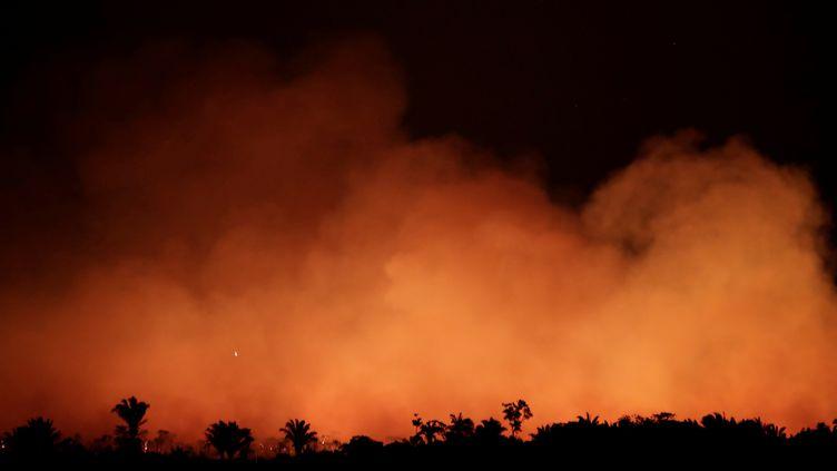 Un feu dans la forêt amazonienne, photographié le 17 août près de la ville d'Humaita (Brésil). (UESLEI MARCELINO / REUTERS)