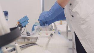 Les Centre d'étude et de conservation des oeufs et du sperme humain (CECOS) gèrent les dons de gamètes pour les procédures de PMA. Les délais d'attente vont de un à deux ans en moyenne pour un couple (ou une personne seule depuis l'extension de la PMA). Image d'illustration auCECOS de Brest. (THOMAS BIET / FRANCE-BLEU BREIZH IZEL)