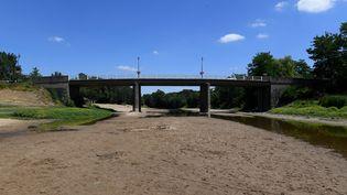 Le Louet près de Rochefort-sur-Loire (Maine-et-Loire) n'est plus qu'un filet d'eau, le 15 juillet 2019. (MAXPPP)