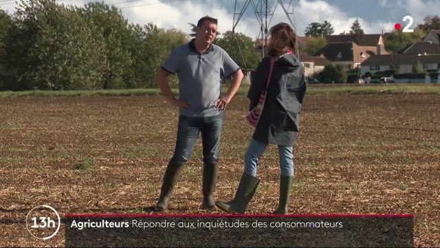 Agriculture : un numéro gratuit pour répondre aux questions des consommateurs