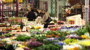 Le marché aux fleursde Rungis (Val-de-Marne), en novembre 2010. (MAXPPP)