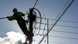 Un technicien ERDF travaille sur une ligne électrique àGatteville-Le-Phare (Manche), le 14 mars 2013. (ALAIN JOCARD / AFP)