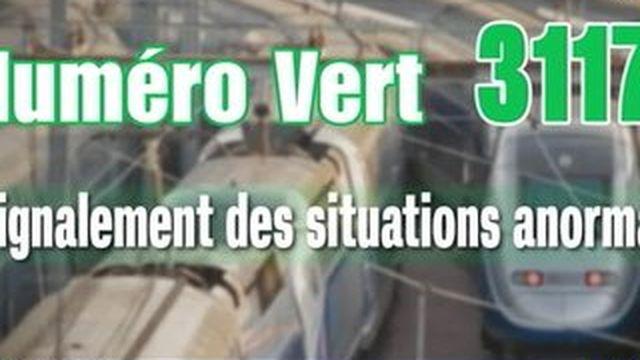 Attaque du Thalys : des contrôles aléatoires mis en place dans les gares