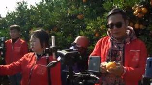 Pour écouler leurs productions en un temps record, des agriculteurs chinois mettent en vente sur Internet leurs récoltes. (FRANCE 2)