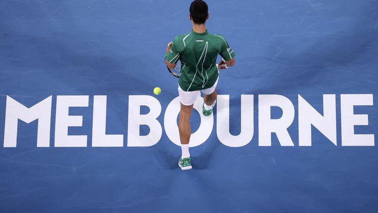 Novak Djokovic, vainqueur de l'Open d'Australie en 2020 (DAVID GRAY / AFP)