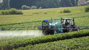 Un fermier asperge de pesticides un champ le 24 juin 2014 à Vimy, près de Lens. (DENIS CHARLET / AFP)