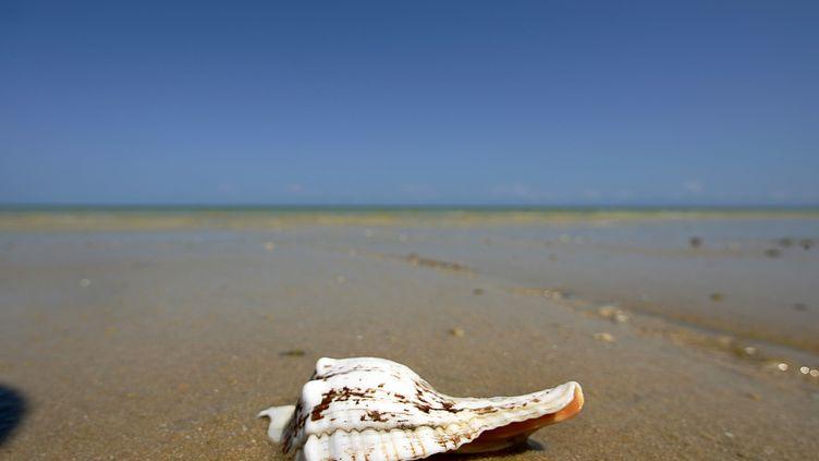 C'est sur une plage paradisiaque de Tuléar, à Madagascar, que Gérald Fontaine avait disparu avec sa compagne le 12 avril. (ALEXANDER JOE / AFP)