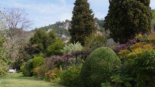 Bordure à l'anglaise, au printemps, dans les Jardins de la Villa Noailles, à Grasse, dans les Alpes-Maritimes. (ISABELLE MORAND / RADIO FRANCE / FRANCE INFO)