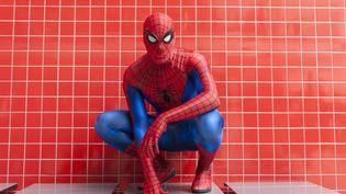 Un homme déguisé en Spider-Man fait partie des fans réunis à la Super Comic Convention au Excel Center de Docklands à Londres (Grande-Bretagne), le 20 février 2016. Photo d'illustration. (STEPHEN CHUNG/LNP / MAXPPP)