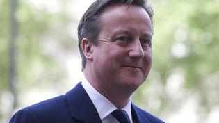 Le Premier ministre britannique, David Cameron, le 10 mai 2015, à Londres. (JUSTIN TALLIS / AFP)