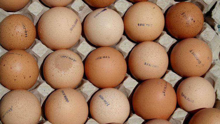 Cette flambée s'explique par la raréfaction de la production d'œufs, provoquée par la mise aux normes des cages des poules pondeuses. (GILE MICHEL / SIPA)