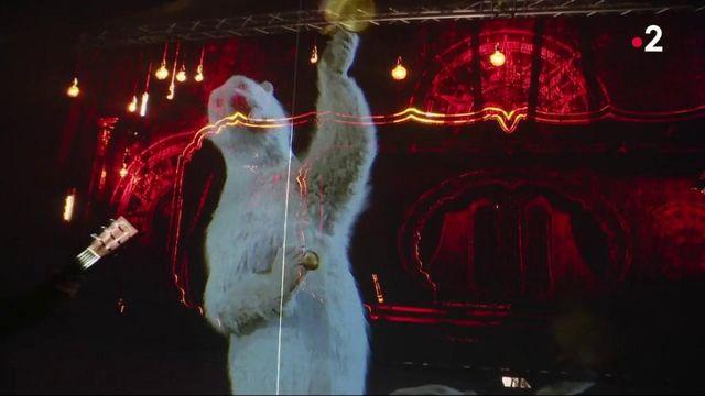Cirques : des hologrammes à la place des animaux