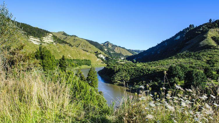 Une vue du fleuve Whanganui (Nouvelle-Zélande) qui a obtenu, le 15 mars 2017, le statut d'entité vivante. (MICHAEL RUNKEL / ROBERT HARDING PREMIUM / AFP)