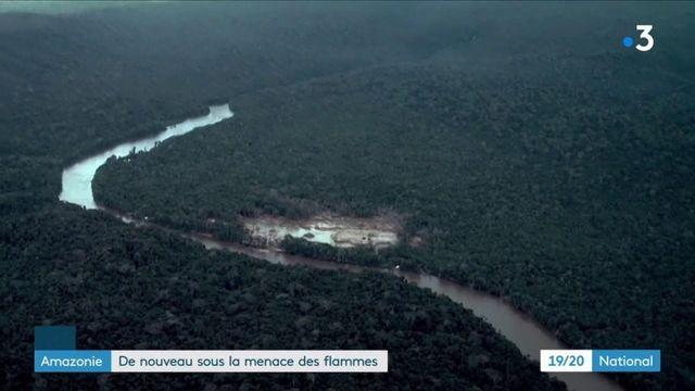 Amazonie : de nouveau sous la menace des flammes