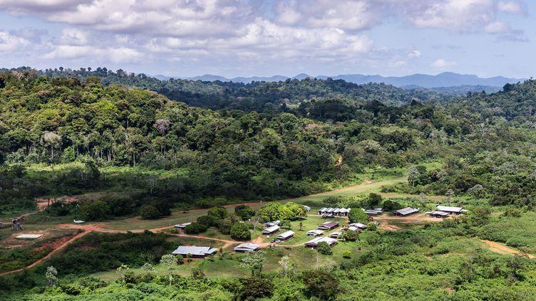 Une vue aérienne du site de la Montagne d'or en Guyane, le 12 octobre 2017. (JODY AMIET / AFP)