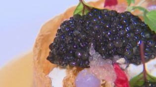 Le caviar d'Aquitaine : des grains d'excellence (CAPTURE D'ÉCRAN FRANCE 3)