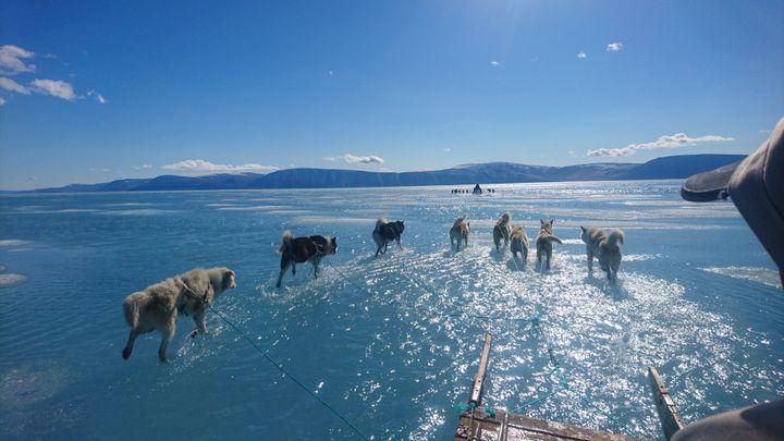 Une équipe de scientifiques a traversé un fjord du Gröenland inondé jeudi 13 juin 2019. (STEFFEN M. OLSEN)