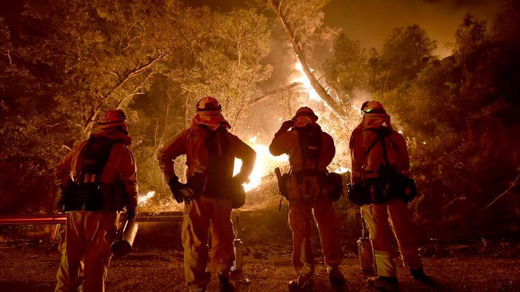 Des pompiers américains, le 2 août 2015 à Clear Lake (Californie, Etats-Unis). (JOSH EDELSON / AFP)
