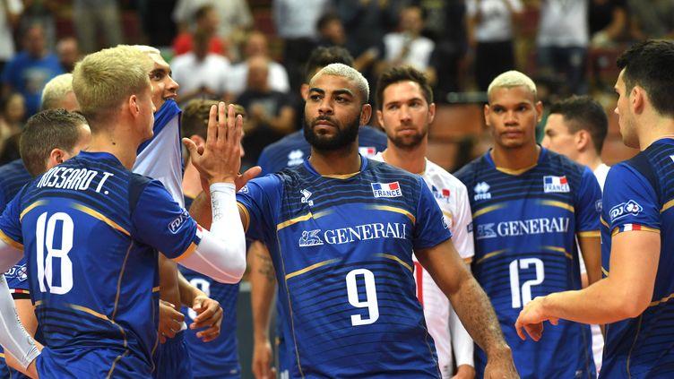 L'équipe de France est en finale de la Ligue des Nations. (PIOTR NOWAK / AFP)