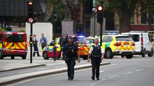 Des policiers montent la garde à proximité du lieu où une voiture a percuté les grilles du Parlement britannique, à Londres, le 14 août 2018. (HANNAH MCKAY / REUTERS)