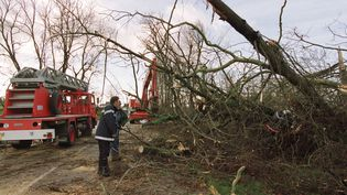 Les pompiers déblaient la D511 entreSaint-Pierre-sur-Diveset Falaise (Calvados),le 26 décembre 1999. (MYCHELE DANIAU / AFP)