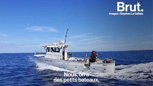 """VIDEO. En Corse, ce pêcheur prône une pêche """"durable"""" et """"responsable"""" (BRUT)"""
