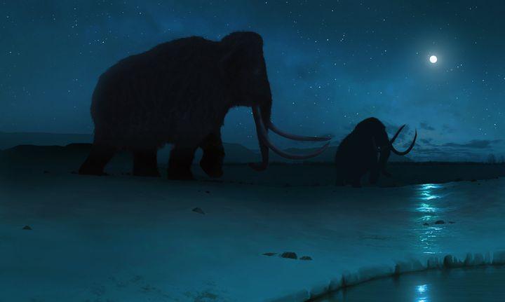 Illustration en 3D d'un mammouth laineux qui vivait durantla première époque géologique du Quaternaire qui s'étend de 2,58 millions d'années à 11 700 ans avant le présent. (MARK GARLICK/ SCIENCE PHOTO LIBRARY RF / GETTY IMAGES)