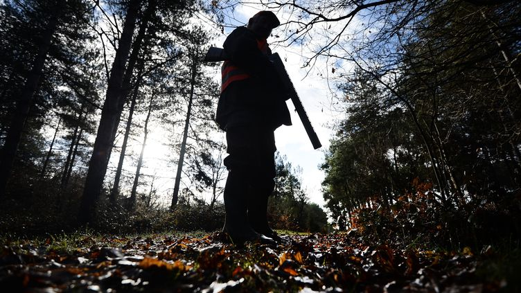Un chasseur de Loire-Atlantique. Photo d'illustration. (JEAN-SEBASTIEN EVRARD / AFP)