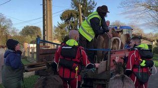Des animaux sauvés par des pompiers plongeurs lors des inondations dans le Lot-et-Garonne. (CAPTURE ECRAN FRANCE 3)