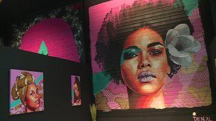 Le festival Mister Freeze de Montauban expose le travail de 20 femmes street artistes (France 3 Occitanie)