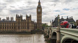 Le palais de Westminister à Londres, le 5 mai 2017. (DANIEL KALKER / DPA)