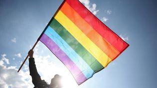 Un drapeau arc-en-ciel déployé à l'occasion d'une gay Pride en Pologne à Varsovie. (WOJTEK RADWANSKI / AFP)