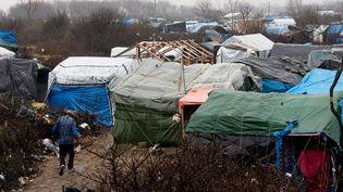 Photo d'une partie de la jungle sud de Calais le 22 février 2016.