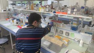 Au Centre de biophysique moléculaire de l'université d'Orléans (Loiret), mai 2021 (ANNE-LAURE DAGNET / FRANCEINFO / RADIO FRANCE)