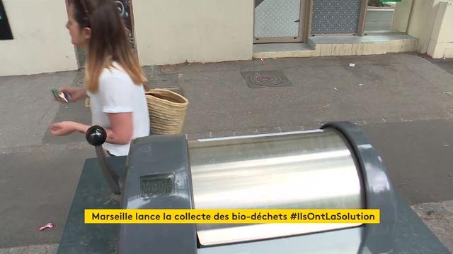 Ramassage des biodéchets à Marseille