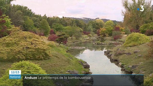 Gard : le printemps au cœur de la bambouseraie d'Anduze
