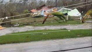 Des arbres balayés par l'ouragan Dorian aux Bahamas, le 1er septembre 2019. (SOCIAL MEDIA / AFP)