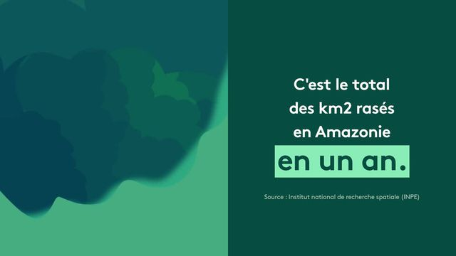 300819-FTVI-MOD-XX_Chiffres_feu_en_Amazonie