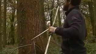 arbre EcoTree (France 3)