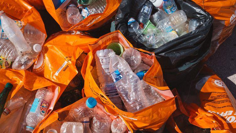 Des bouteilles en plastique ramassées sur une plage du Prado, 15 septembre 2018, à Marseille (Bouches-du-Rhône). (THEO GIACOMETTI / HANS LUCAS / AFP)