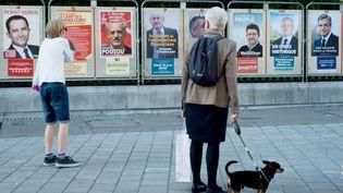 Des panneaux électoraux, à Pau (Pyrénées-Atlantiques), le 10 avril 2017. (LAURENT FERRIERE / HANS LUCAS / AFP)
