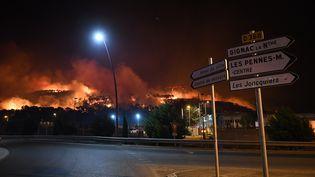 Un important incendie parcourt les collines des Pennes-Mirabeau, au nord de Marseille, dans la nuit du mercredi 10 au jeudi 11 août 2016. (BORIS HORVAT / AFP)