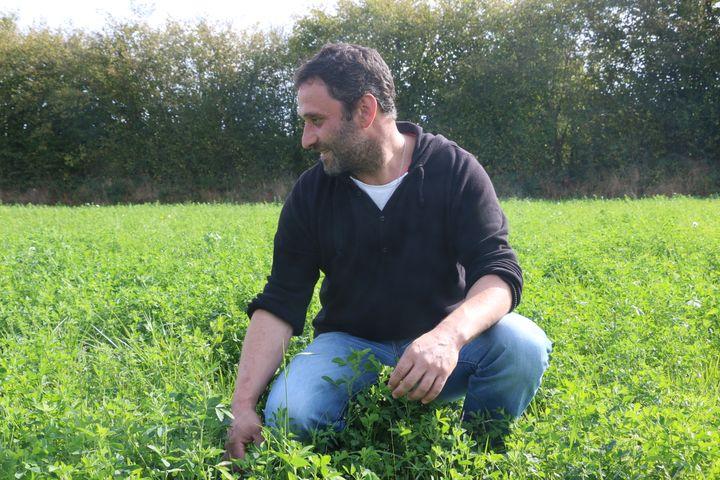 Alain Davy, agriculteur bio, parcourt l'une de ses prairies à Pointel (Orne), le 27 septembre 2017. (VALENTINE PASQUESOONE / FRANCEINFO)