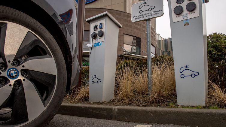 Une recharge de voitures électriques dans le Nord de la France, le 13 février 2017. (PHILIPPE HUGUEN / AFP)