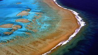 Selon cette étude, jusqu'à 14 000 tonnes par an de crème solaire se retrouvent dans les eaux baignant les récifs coralliens dans le monde. (MARC LE CHELARD / AFP)