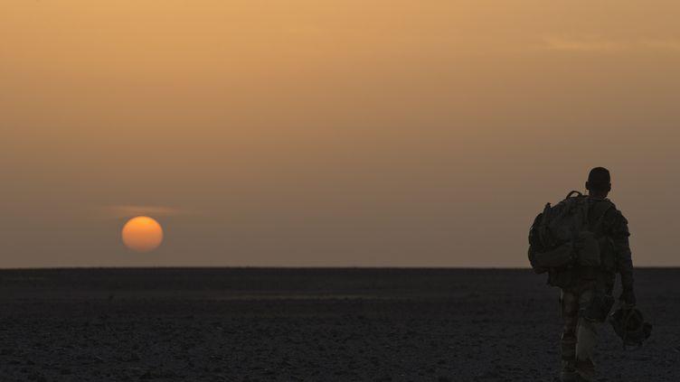 Un soldat français, au nord de Gao (Mali), le 7 avril 2013. (JOEL SAGET / AFP)