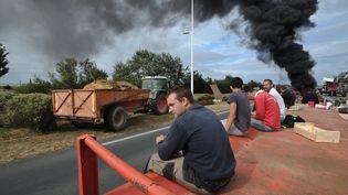Des agriculteurs bloquent le pont qui permet d'accéder à l'île d'Oleron à Marennes(Charente-Maritime), le 22 juillet 2015. (XAVIER LEOTY / AFP)