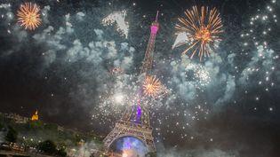 Des feux d'artifice au-dessus de la tour Eiffel, le 14 juillet 2015, lors de la Fête nationale à Paris. (FRANCOIS PAULETTO / CROWDSPARK / AFP)