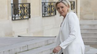 Marine Le Pen devant l'Elysée le 25 juin 2016 à l'occasion d'une réunion post-Brexit entre les leaders des partis politiques français et le président François Hollande (Image d'illustration) (GEOFFROY VAN DER HASSELT / AFP)